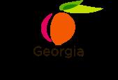 Georgia DOAS